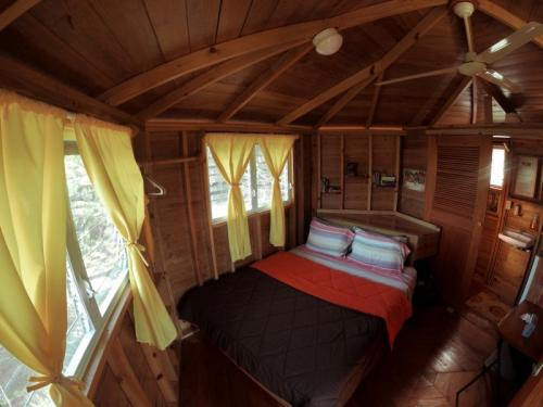 Tree House Belize
